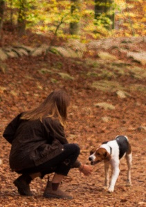 Use my favorite dog training game Be a Magnet so your dog can't resist being near you.